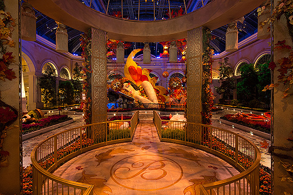 Bellagio Conservatory Fall Display East Garden