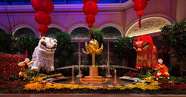 bellagio conservatory lunar new year north bed low