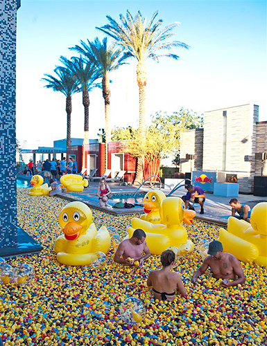 Palms_Duck_Party_1