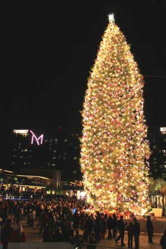 M_Resort_Tallest_Christmas_Tree_after_lighting_349